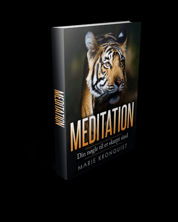 E-Bog: Meditation